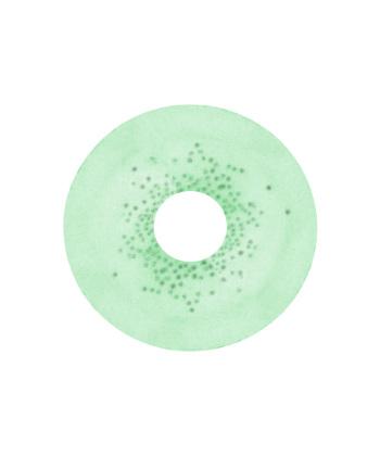 DUEBA SPATAX GREEN COLOR LENS