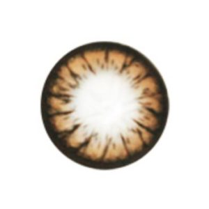 GEO CAMEMBERT BROWN WT-C44 BROWN COLOR LENS