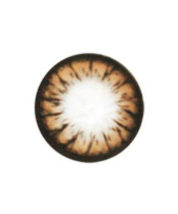 GEO CAMEMBERT BROWN WT-C44 BROWN COLOR LENS