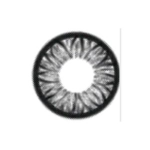 GEO SUNFLOWER GREY WFL-A25 GREY COLOR LENS