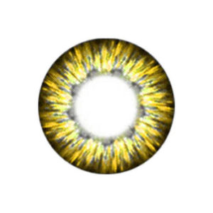 VASSEN CHEERFUL GOLD COLOR LENS