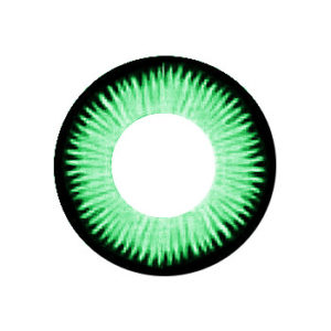 VASSEN CICI GREEN COLOR LENS
