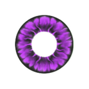 VASSEN TOFI PURPLE COLOR LENS